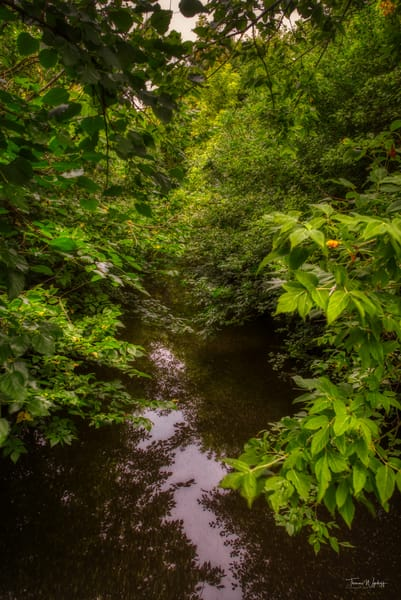 Little Creek 3, 2020. Photography by Thomas Wyckoff.