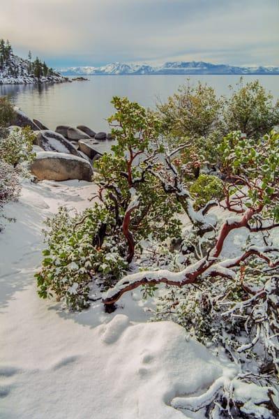 Tahoe Dreams Photography Art | David Lawrence Reade