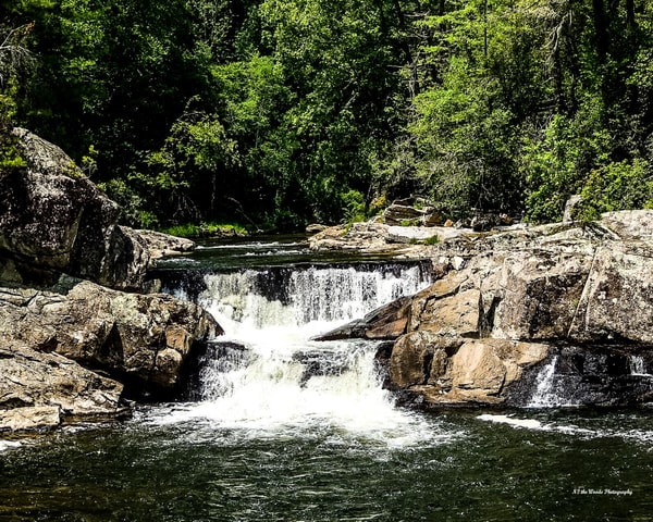 Waterfall Photography Art | N2 the Woods Photography