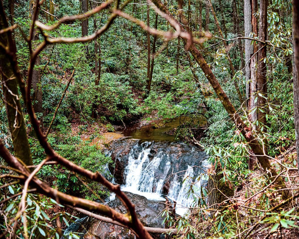 Raven Cliff Falls  Photography Art | N2 the Woods Photography