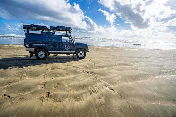 Defender, New Zealand Photography Art | Tolowa Gallery