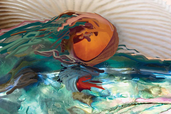 Wave Shells Art | Nosco Fine Art