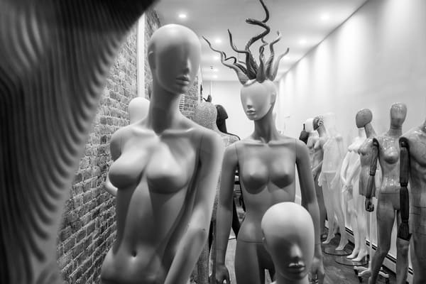 Mannequins and Their Friends