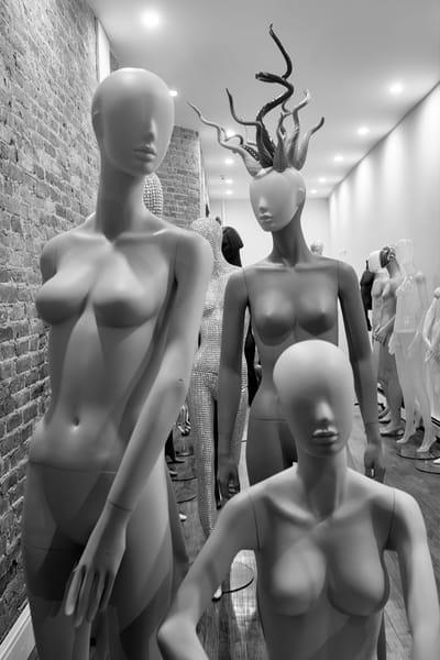 Interloping Medusa Photography Art | Ed Lefkowicz Photography