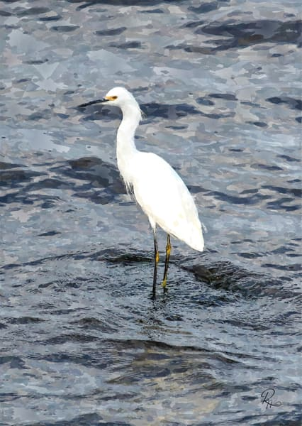 Snowy Egret Watercolor Photography Art | Lion's Gate Photography