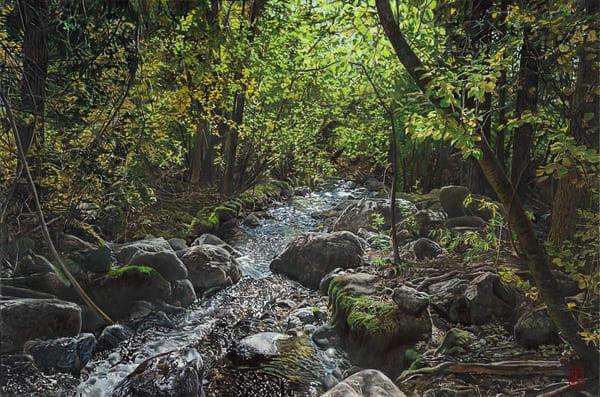Cottonwood trail t7tnwe