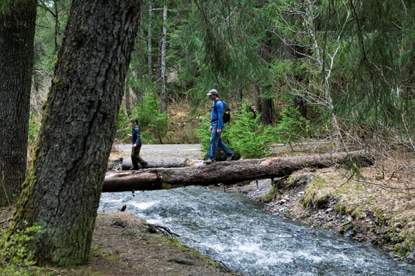 Father Son Hike  Art   DocSaundersPhotography
