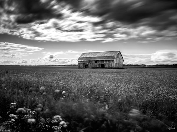 Wind Art | TG Photo