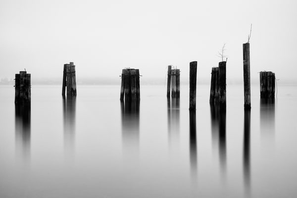 Pilings, Puget Sound, Tacoma, Washington, 2014
