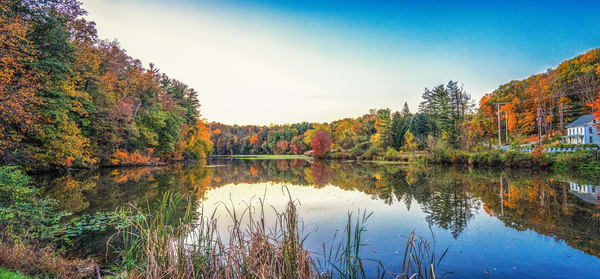 """""""Fall Over Lake Williams"""" Photography Art   Inspired Imagez"""