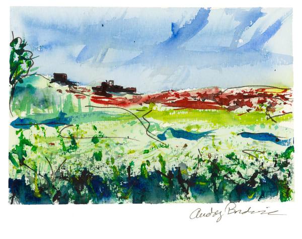France - Burgundy - View of Fields - Audrey Bordvick