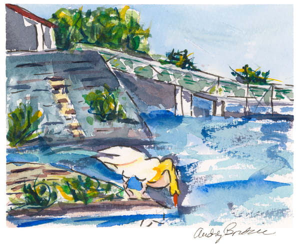 France - Goose at the Dock - Audrey Bordvick