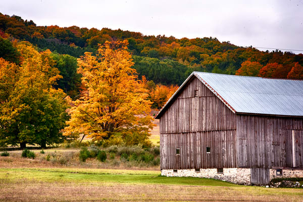 Brilliant colors appear behind this homestead barn