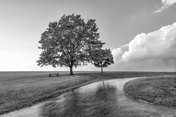 """Reflection Path"" Photography Art | Inspired Imagez"