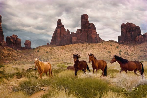Wild Horses In Monument Valley Art | Sharon Beth
