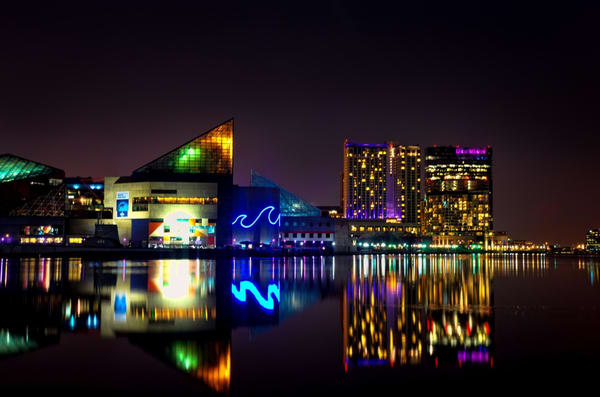 """Close Up Of The National Aquarium"" Photography Art   Inspired Imagez"