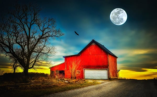 """Stewartstown Farm Life"" Photography Art   Inspired Imagez"