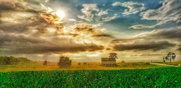 """""""After The Rain"""" Photography Art   Inspired Imagez"""