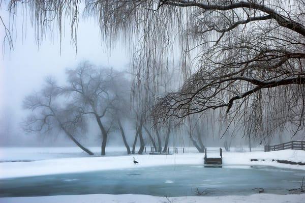 """Winter Dream"" Photography Art | Inspired Imagez"