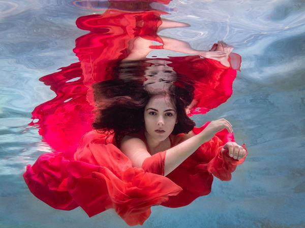 The Rose Named Lina Photography Art | Dan Katz, Inc.