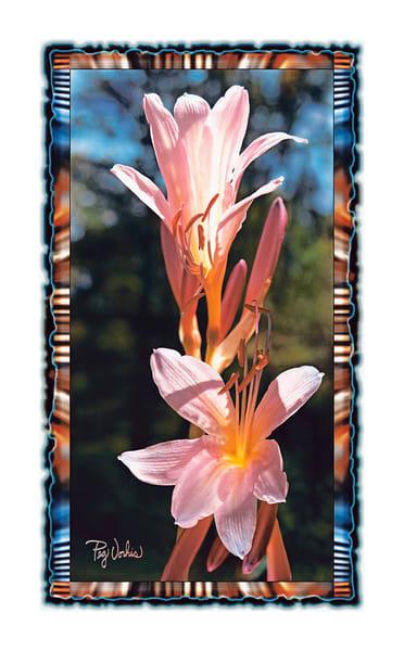 August Lilies Art | Cincy Artwork