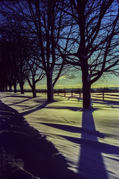 Winter Shadows Photography Art | David Lawrence Reade