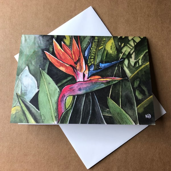 Bird Of Paradise Greeting Card | Water+Ink Studios