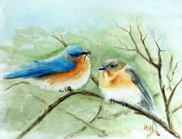 Bluebird Couple  Art | Holly Whiting Art