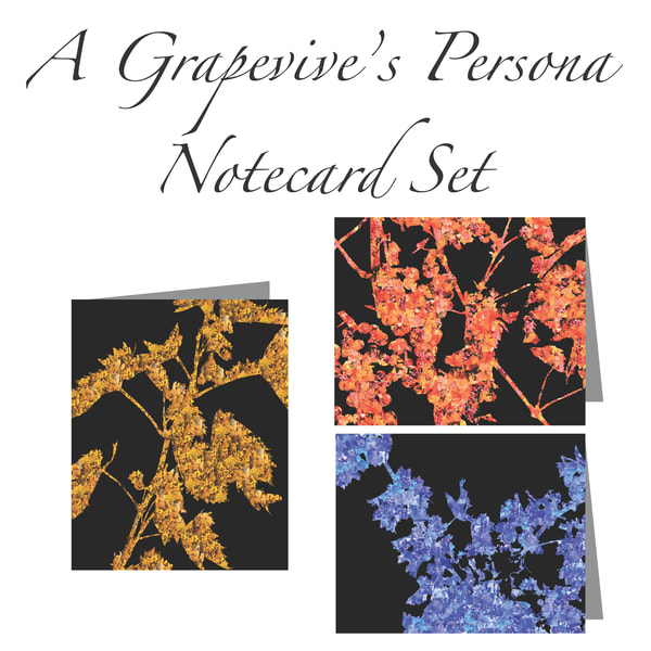 Wine Art: A Grapevine's Persona Notecard Set (3 Cards) | Susan Searway Art & Design