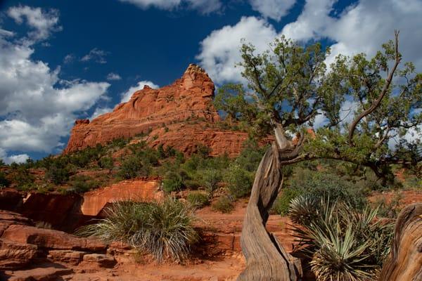 Red Rock Landscape Near Sedona, Arizona Art   karenihirsch