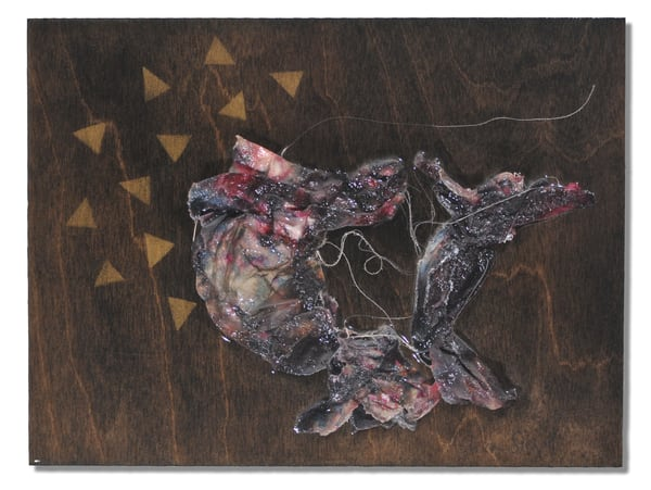 The Dancers Art | Ashira Siegel Fox