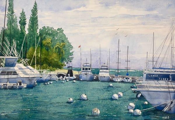 hawaii, maui, lahaina, boats, boat
