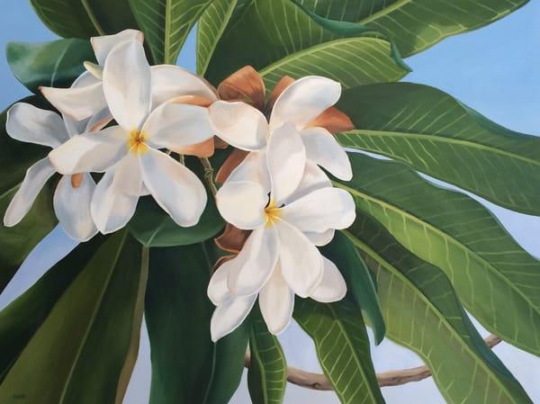 Beautiful Blooms Art | Suzanne Aulds Studio
