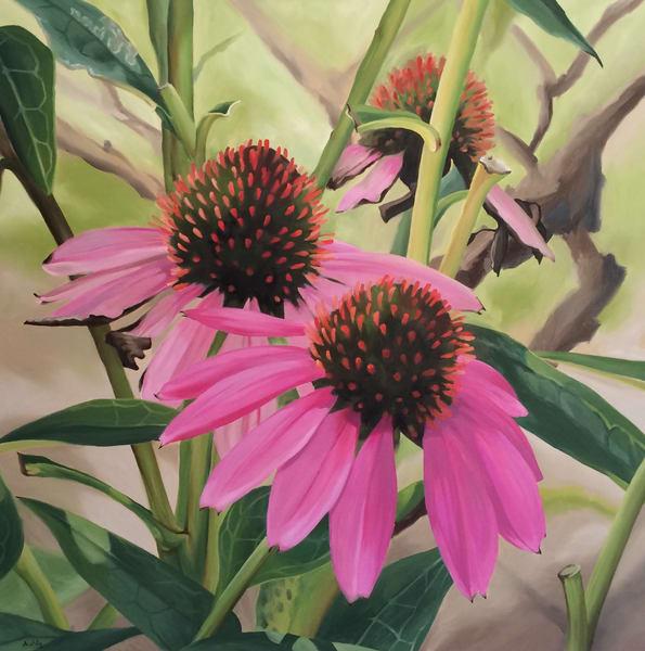 Coneflowers Art | Suzanne Aulds Studio