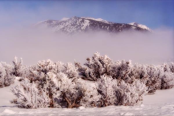 Ridge Reveal Photography Art | David Lawrence Reade