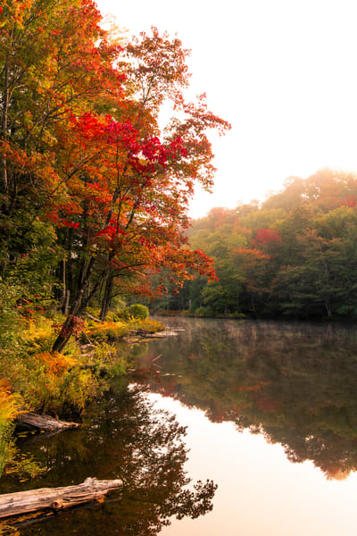 Otter Lake Fall  From Dam Photography Art | Kurt Gardner Photogarphy