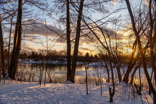 Sunset By The Lake Photography Art | Elizabeth Stanton Photography