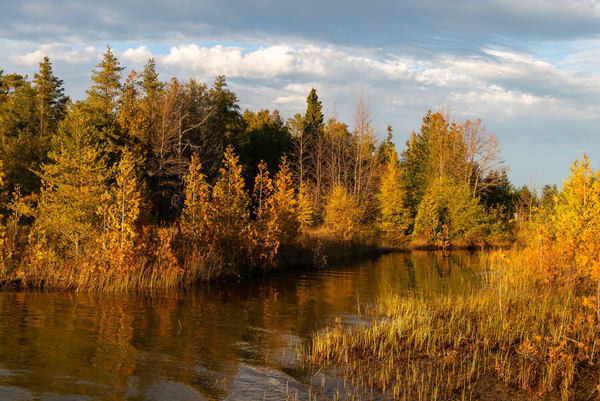 Late afternoon as the sun begins to go down, one Autumn evening. Taken at Singing Sands on the Bruce Peninsula