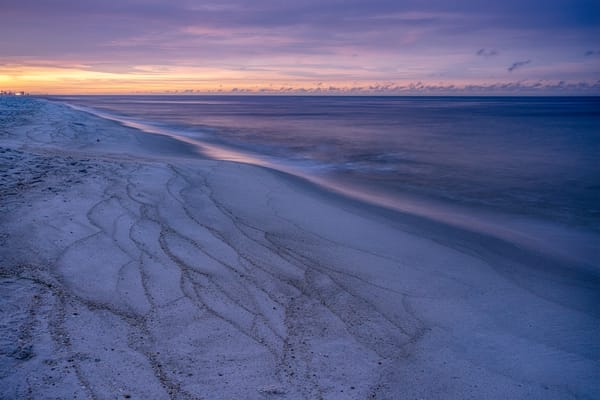 Lavender Beach Art | davinart