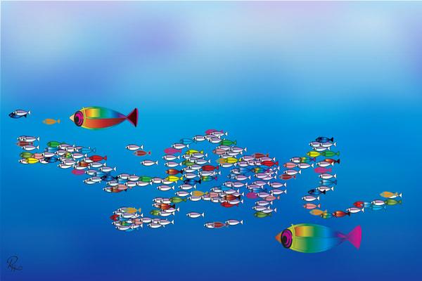 Fish: Shop prints   Lion's Gate Photography