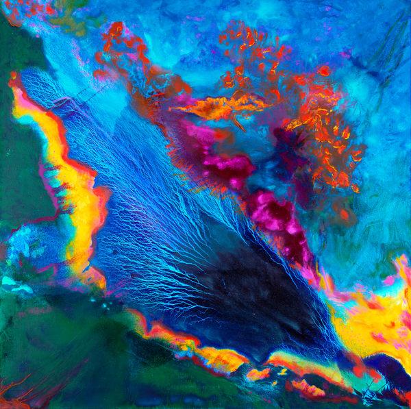 Great Barrier Reef Art | Rhona LK Schonwald