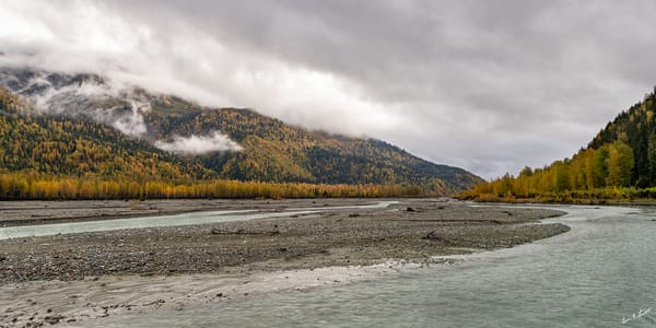 Klehini River Fall View Art | Alaska Wild Bear Photography