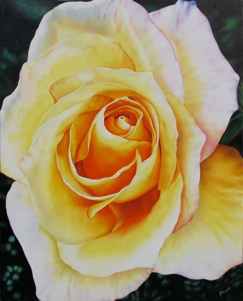 Golden Rose   Original Art   Mercedes Fine Art