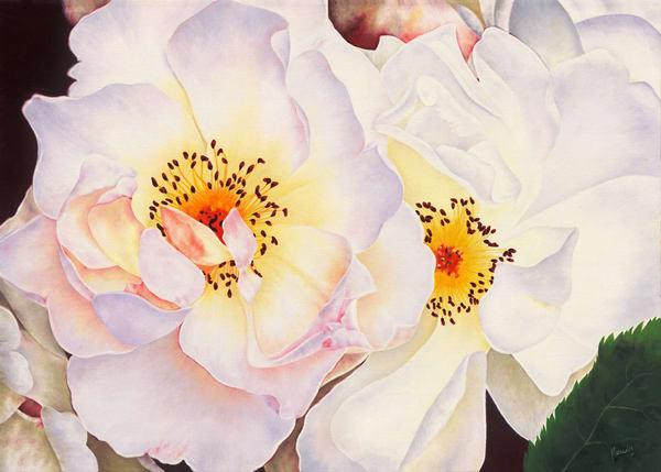 White Roses   Original Art   Mercedes Fine Art