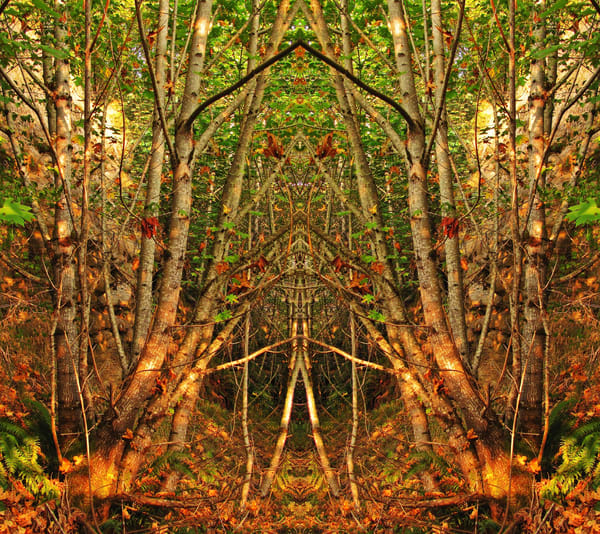 Mirror 497_The Stick Man