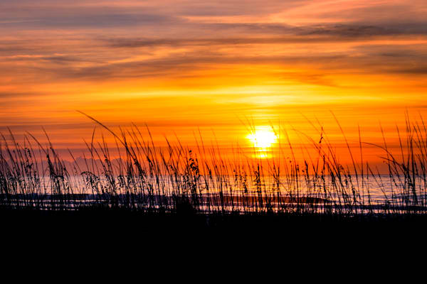 Beach Sunrise on Hilton Head from Sand Dunes