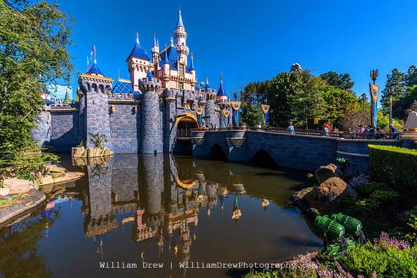 Disneyland Castle   Disneyland Wall Murals Photography Art | William Drew Photography