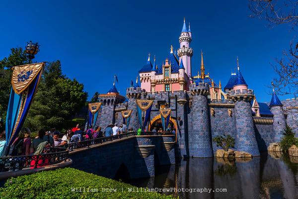 The Original Disney Castle   Disneyland Wallpaper Mural Photography Art | William Drew Photography