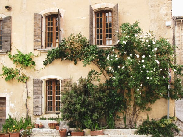 Ivy Covered Weathered Walls In Provence Photography Art | Julie Williams Fine Art Photography
