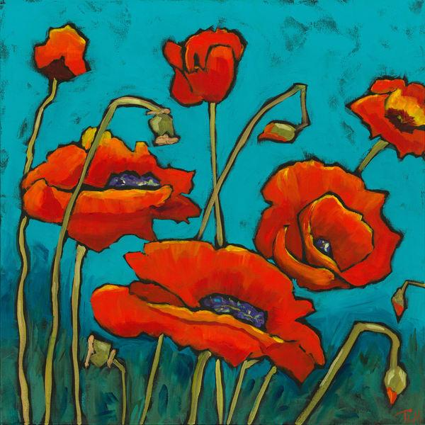 Bold Poppy - Terry MacDonald